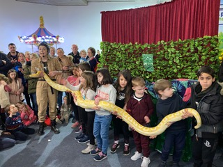 Jungle Shows at Citywest Shopping Centre – Round-Up Post!