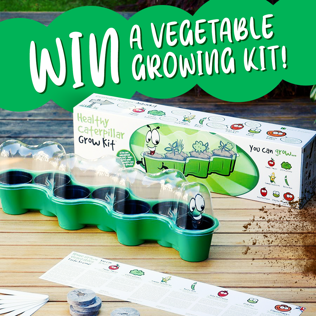 Competition: Win 1 of 20 Vegetable Growing Kits!