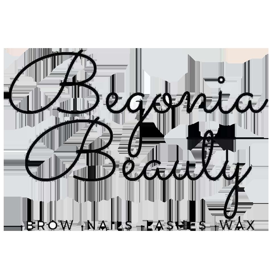 Begonia Beauty